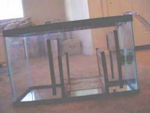 how to make a sump for a fish tank