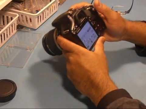 canon rebel xsi 450d sd slot repair part 3 youtube rh youtube com JD 450D Canon EOS 500D