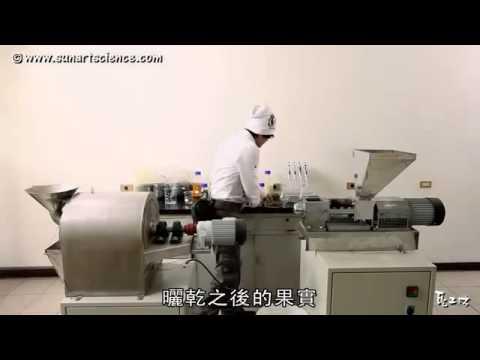 Jatropha biodiesel manufacturing (痲瘋樹製造生質柴油)