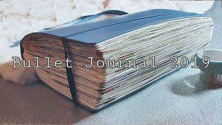 My 2019 Bullet Journal Flip Through ♥