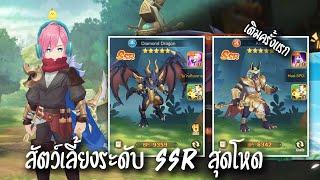 Diamond Dragon มังกรสุดโหด สายบัพ [สัตว์เลี้ยงระดับ SSR] | Cloud Song: บทกวีแห่งท้องฟ้า screenshot 4