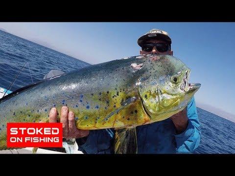 Big Tuna And Dorado   Stoked On La Ventana   Part 1
