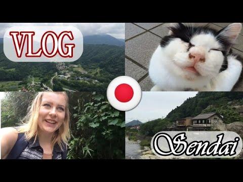 Katzeninsel, Berge & die schönste Natur JAPANS | Sendai VLOG#2