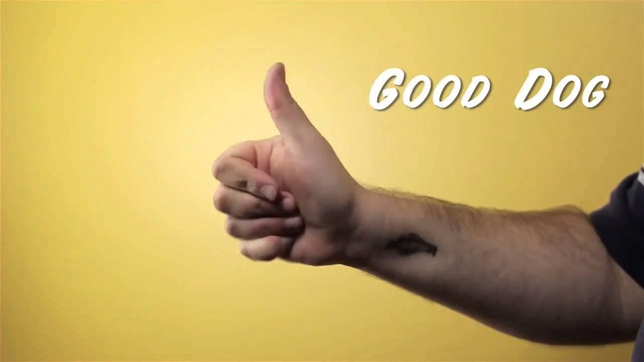 Common Pet Training Hand Signals - YouTube