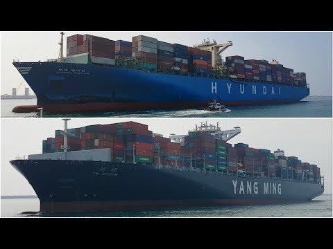 Container Ship Battle, Hyundai Ambition VS. Yang Ming YM Window (Kaohsiung Harbor)