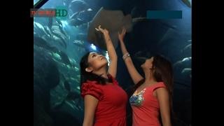 Duo Seksi Wow..!! montok, Chef Rinrin Marinka Vanessa Angel , Cooking Paradise #Arsip #Lama