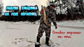 Рыбалка на хищника Оставил жерлицы на ночь