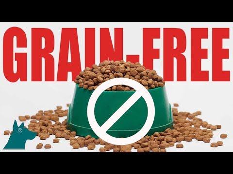 Grain-Free Dog Food Warning!