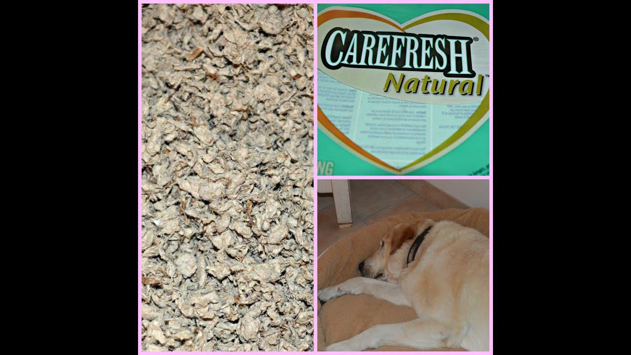 Revue litière de cellulose Carefresh & panier pour chien