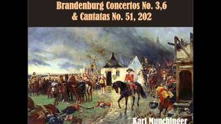 Brandenburg Concerto No. 3 in G Major: II. Adagio - Allegro