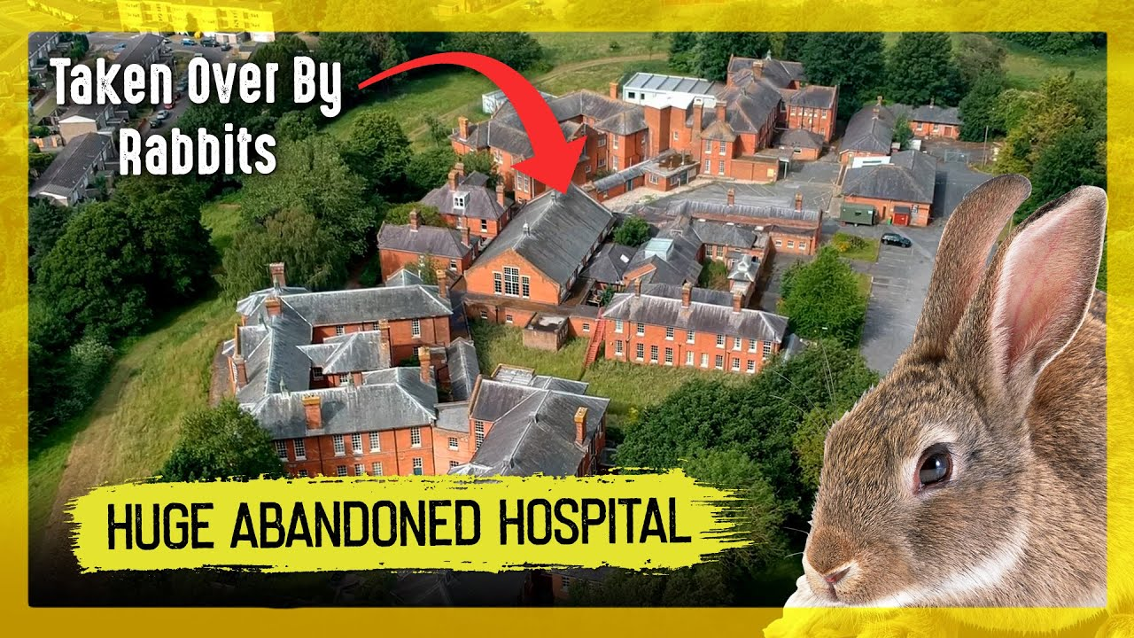 Exploring a Huge Abandoned Asylum taken over by Bunnies!