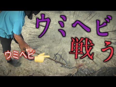 【超危険】所持金0円で釣り生活 8話【伊是名島編】