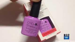 CND Shellac #90797 Beckoning Begonia