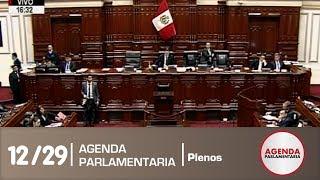 Sesión del Pleno 12/29 (04/04/19)