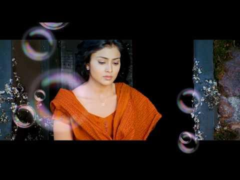 Kutty Yaaro En Nenjai Video   Dhanush   Devi Sri
