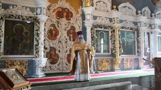 Иерей Георгий Андрианов. Проповедь в Неделю 18-ю по Пятидесятнице, 23 октября 2016