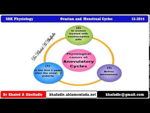 Anovulatory female cycles (12-2014) by Dr Khaled A Abulfadle