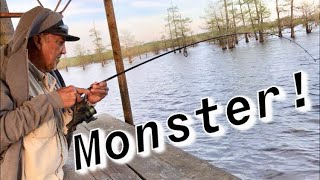 Monster Fish! Fishing with cut bait! Bank Fishing! Crappie Fishermen! Big Turtle! @itsacrappielife