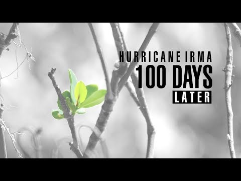 Hurricane Irma 100 Days Later