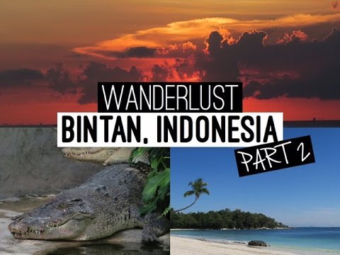 VLOG: Bintan, Indonesia Part 2 | Beautiful Sights + Snakes & Crocs