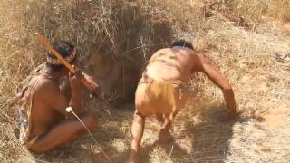 Primitive tribes in the heart of the Kalahari Desert Part 5 : Porcupine Hunting