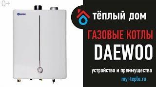 Настенный газовый котел Daewoo: устройство и преимущества