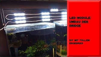 LED MODULE/ UMBAU MEINER BRIDGE