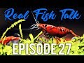 How To Cycle An Aquarium Fishless, With Fish, With Plants. #27