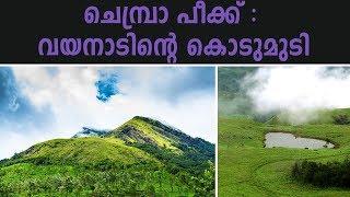 ചെമ്പ്രാപീക്കിലേക്ക് ട്രെക്ക് ചെയ്യാം | Chembra Peak Trekking (Wayanad)