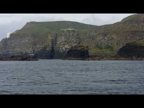 Clip of boat trip - Rathlin Island - Northern Ireland Environment Agency (NIEA)