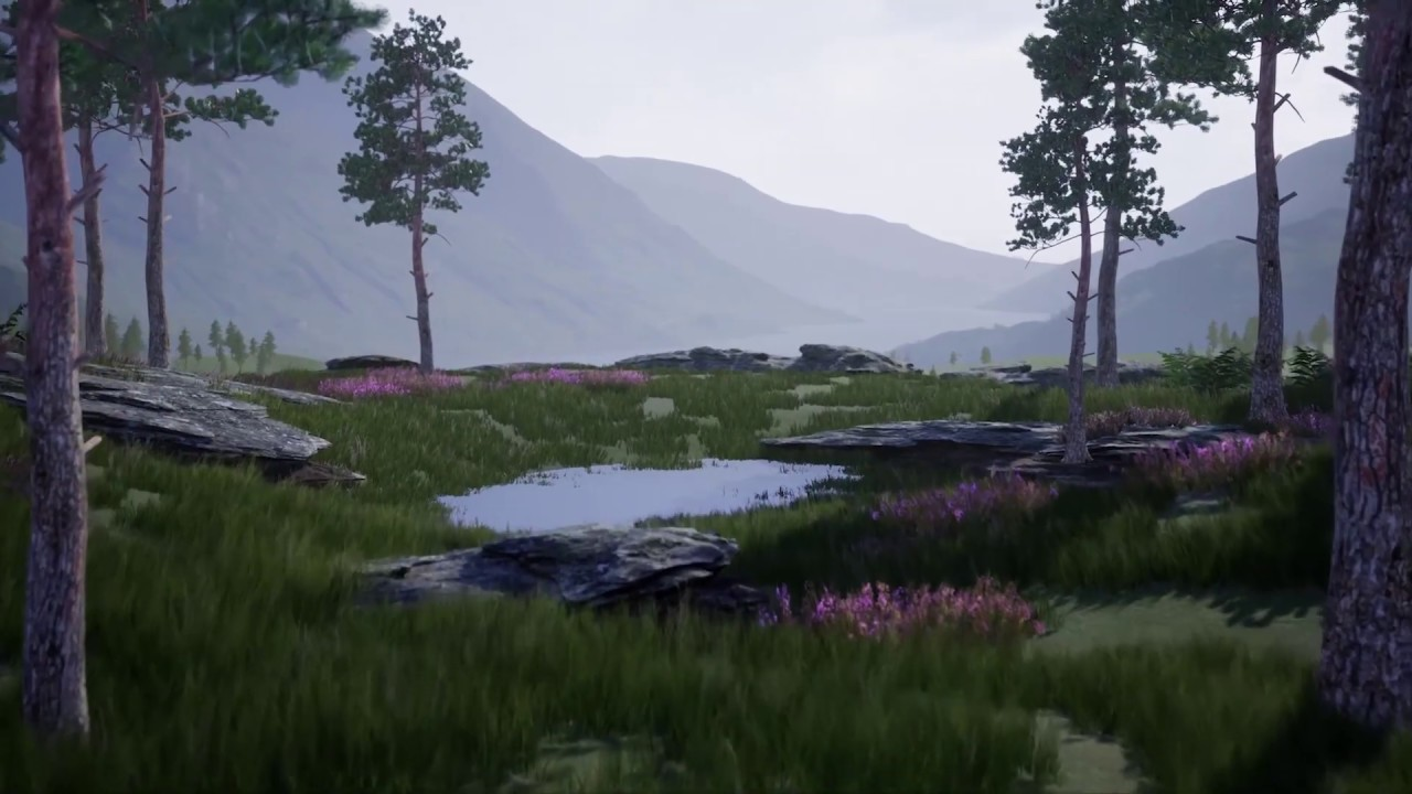 Outdoor Environment Creation in the Unreal Engine | 3D Models and 3D