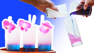 Color-Changing Tea
