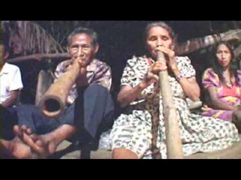 Música Indígena de Venezuela. Sasaría. Etnia Warao