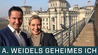 Alice Weidel: Was verheimlicht SIE? Bild-Zeitung. Goldman Sachs. Nachrichtendienste. Charakter.