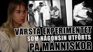 Download STANFORD PRISON EXPERIMENT | Den sanna hemska berättelsen Mp3 and Videos