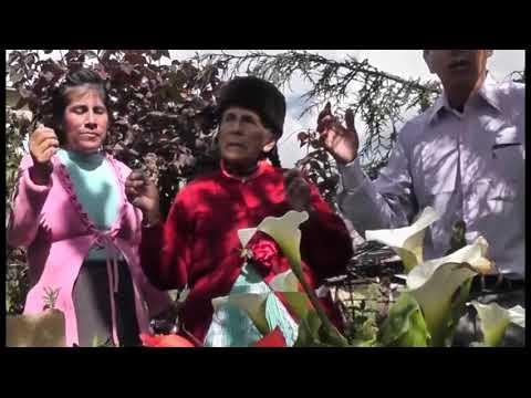 Ministerio  de Alabanza y Adoracion BENDITOS DE SION - VIDA ETERNA      DVD 2017