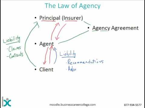 Insurance Agency System