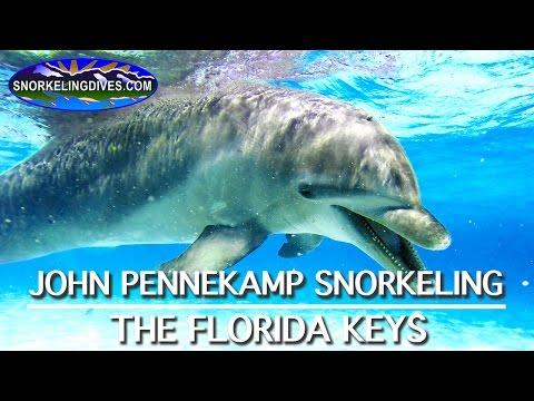 Snorkeling John Pennekamp State Park | Florida Keys
