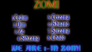 ZOMI CENSUS 2014