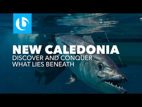 Blue Lagoon: What Lies Beneath - New Caledonia GT Popping and Jigging