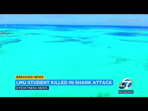 Bahamas shark attack: Torrance woman dies after being bitten by shark while snorkeling
