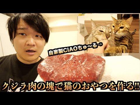 ルトとロゼのためにクジラ肉で自家製CIAOちゅ〜るを作る!!