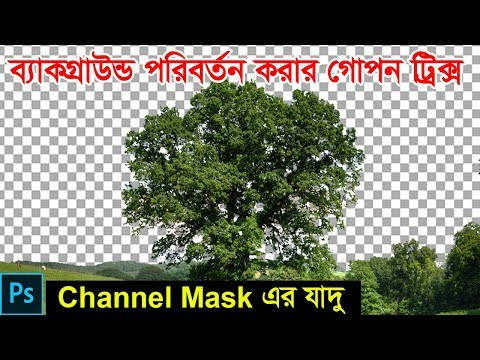 Photoshop Tutorial : How To Change Background Using Channel Mask.