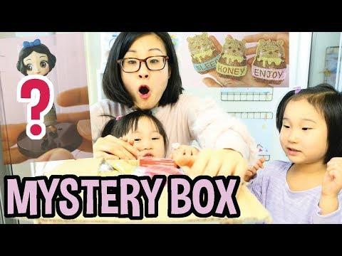 Mystery Toreba Box from Subscriber!