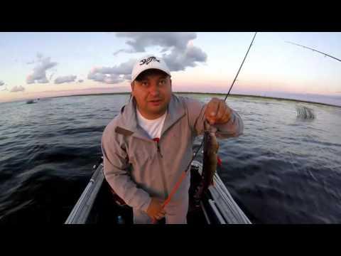 рыбалка на реке веряжа