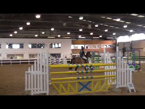 David Coombs Riding Freddie 55 in 1.20m Solihull Riding Club