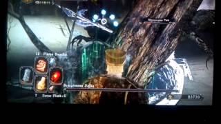 Dark Souls II - Shaded Ruins Item In Najka