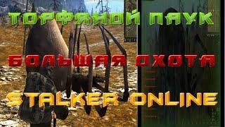 Stalker online Как убить Торфяного паука  и пройти Большую охоту не убив паукана!?!
