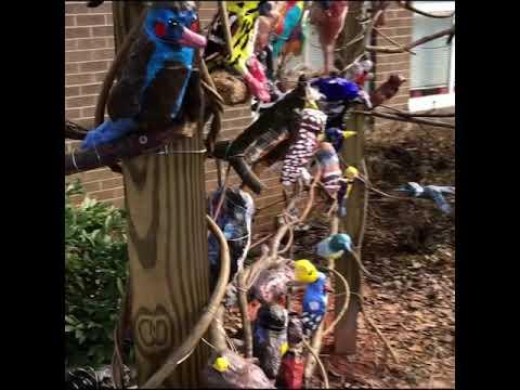 Lead Mine Elementary School bird project