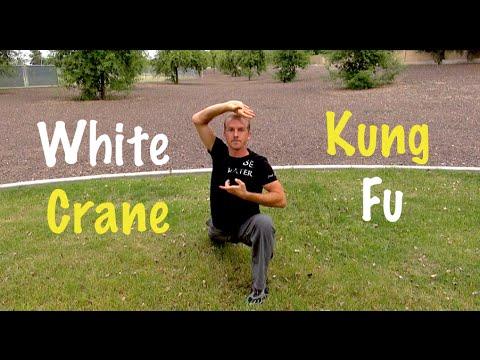 crane kungfu form doovi